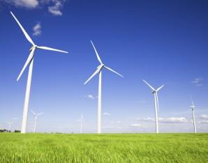 Duurzaam en groen